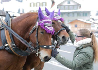 Weihnachtsmarkt_Entlebuch_2017-9757